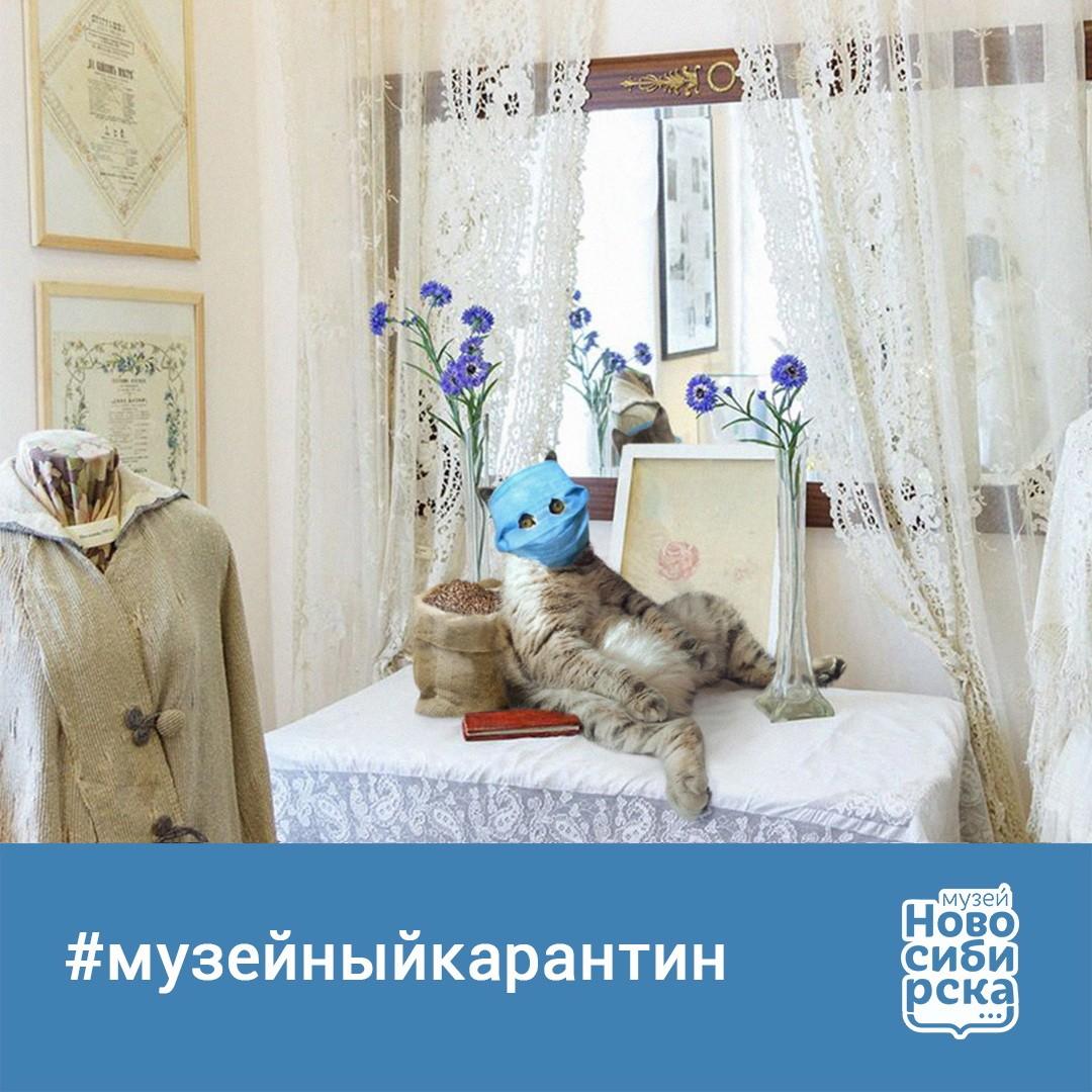 кот в музее