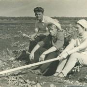 Алексей Поликарпович, в центре, на сельскохозяйственных работах, с сотрудниками Новосибирского электровакуумного завода. 1969 г.